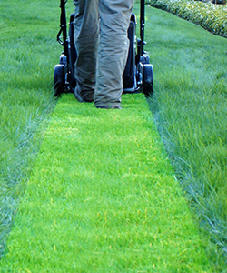 Massachusetts Land Court Holds Lawn Maintenance Alone is Not Open, Adverse, and Exclusive to Establish Adverse Possession